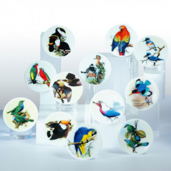 Service Histoire Naturelle - Série de 12 fèves en porcelaine - Prime